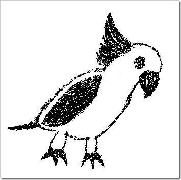 cockateela