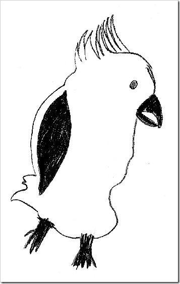 cockatooa