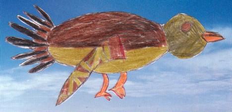 Fantail - Piwaiwaka