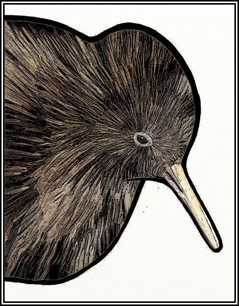 Kiwi*